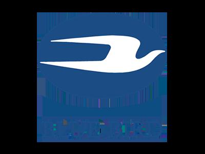 Logótipo Blue Bird